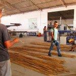 Die Bambusreste werden sortiert