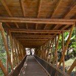 Die Bambusbrücke