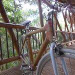 Fahrrad Bambusbrücke